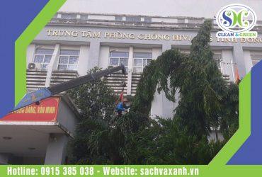 Tiến hành cưa cây cắt tỉa nhánh cây trên địa bàn tỉnh Đồng Nai
